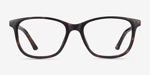 Paint Tortoise Plastic Eyeglass Frames
