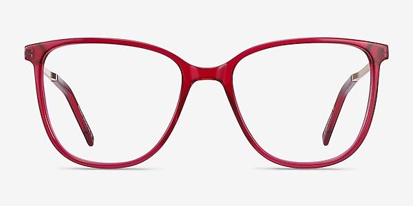 Aroma Raspberry Acetate-metal Eyeglass Frames