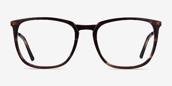 Domenico Tortoise  Gold Acetate Eyeglass Frames
