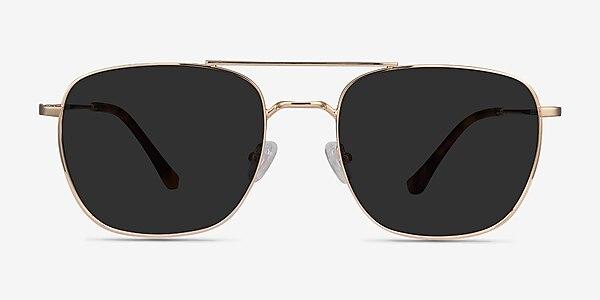 Seeker Golden Metal Sunglass Frames