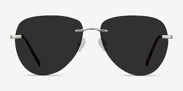 Martin Matte Silver Metal Sunglass Frames