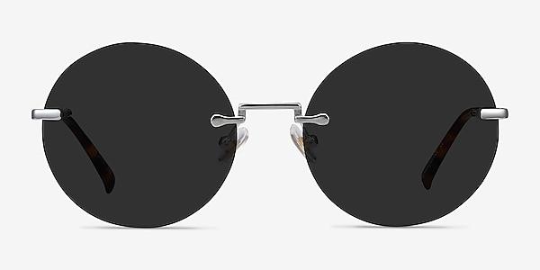 Wise Silver Metal Sunglass Frames