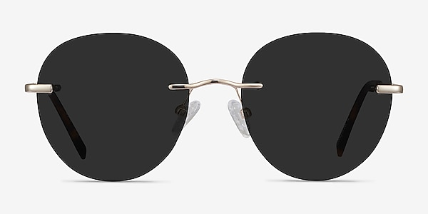 Coast Gold Metal Sunglass Frames