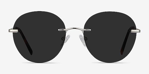 Coast Silver Metal Sunglass Frames