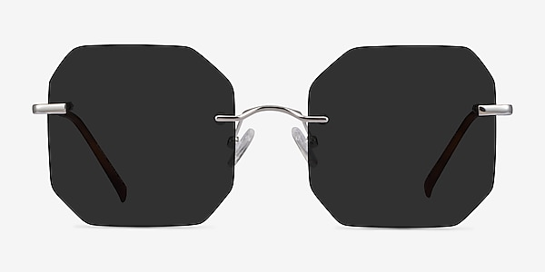 Elmira Silver Metal Sunglass Frames