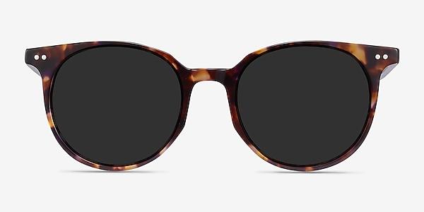 Hideout Tortoise Acetate Sunglass Frames