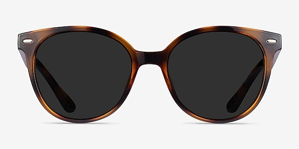 Domino Tortoise Plastic Sunglass Frames