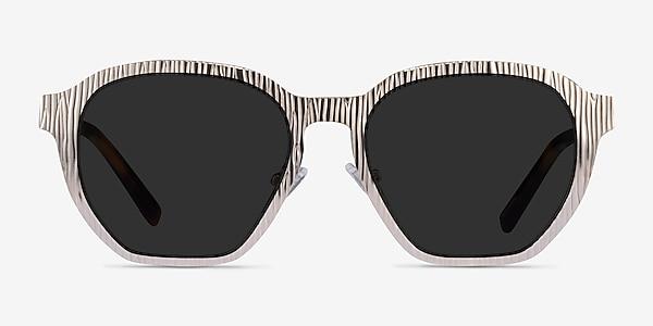 Electro Matte Silver Acetate Sunglass Frames