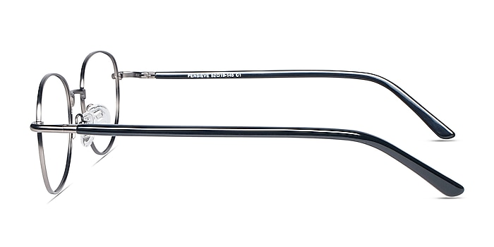 Pensieve Gunmetal Metal Eyeglass Frames from EyeBuyDirect