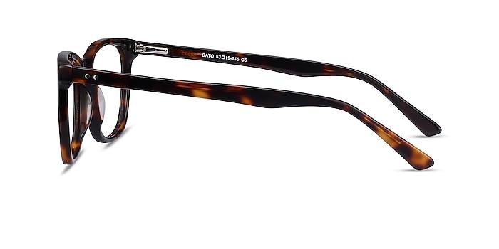 Gato Tortoise Acetate Eyeglass Frames from EyeBuyDirect