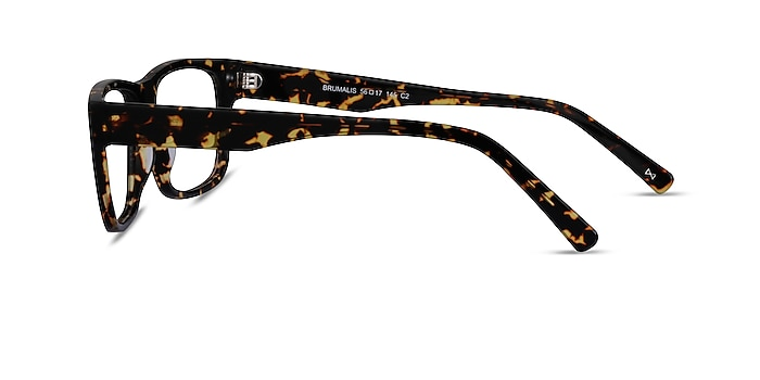 Brumalis Tortoise Acetate Eyeglass Frames from EyeBuyDirect