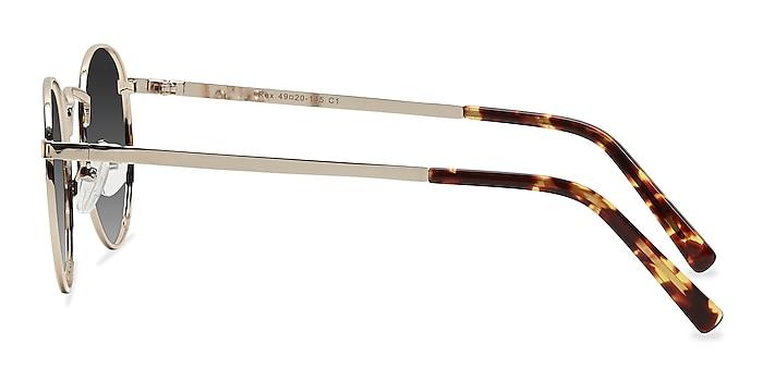Rex Golden Metal Sunglass Frames from EyeBuyDirect