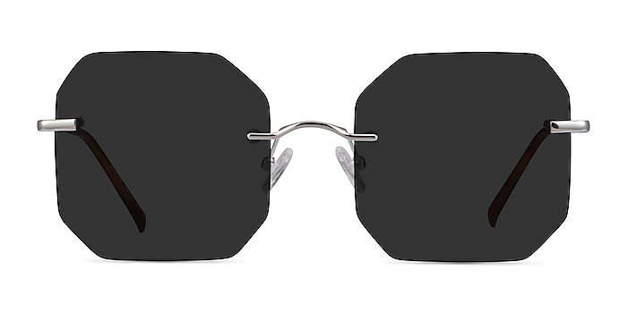 Elmira Silver Metal Sunglass Frames from EyeBuyDirect