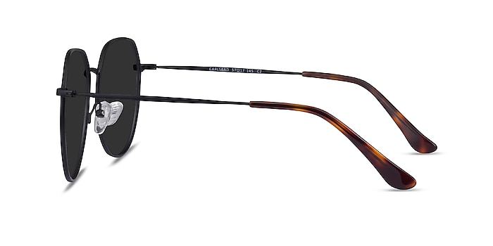 Carlsbad Black Metal Sunglass Frames from EyeBuyDirect