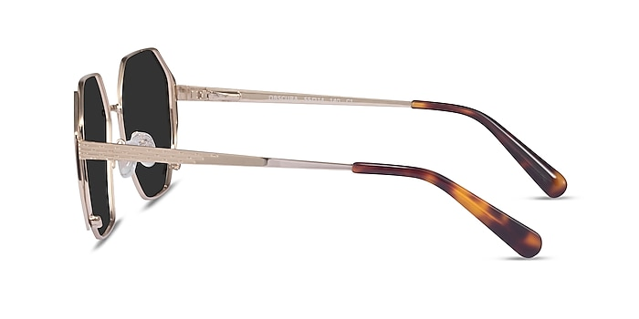Obscura Gold Metal Sunglass Frames from EyeBuyDirect