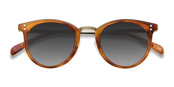 Cinnamon Sun Nostalgia -  Vintage Acetate, Metal Sunglasses