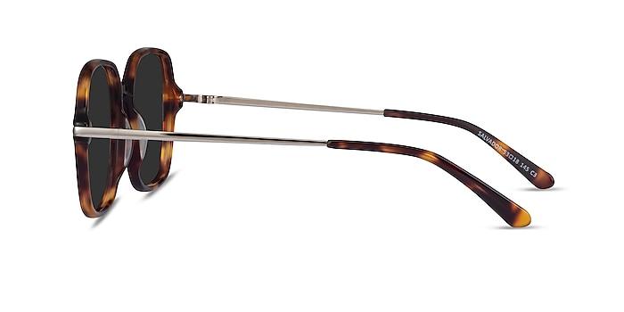 Salvador Tortoise Acetate Sunglass Frames from EyeBuyDirect