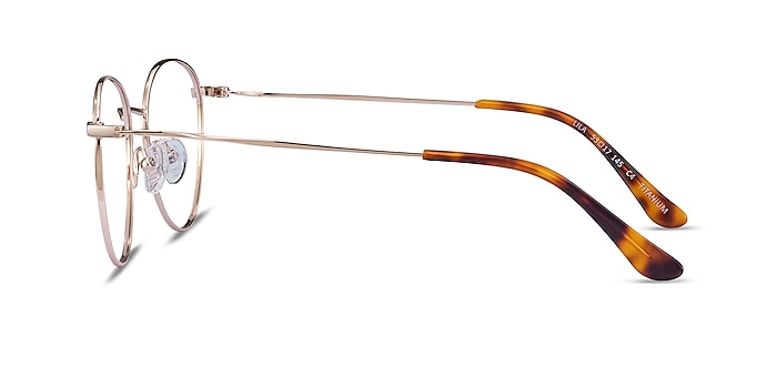 Lila Doré Titane Montures de lunettes de vue d'EyeBuyDirect