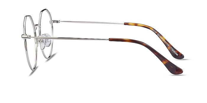 Julia Silver Titanium Eyeglass Frames from EyeBuyDirect