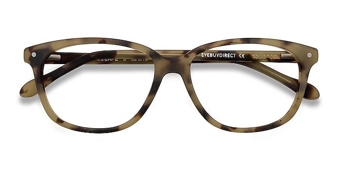 Matte Tortoise Escape -  Acetate Eyeglasses